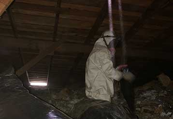 Attic Cleaning | Attic Cleaning Simi Valley, CA
